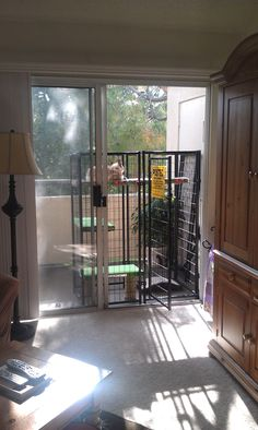 The Catio right outside a sliding glass door. Love it.