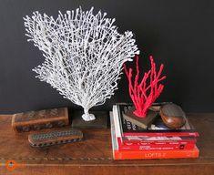 Ohoh Blog - diy and crafts: DIY Coral