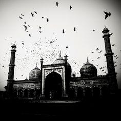 Le photographe Josef Hoflehner a ramené de ses voyages, une série de photos en noir et blanc des paysages indiens. L'atmosphère reflète une ...