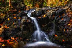 Fall Waterfall Print, Waterfall, Fall Colors, Fall Print, Waterfall Print, Wall Art, Large Wall Art, Metal Print, Canvas Print, Fall by BrightArtStudios on Etsy