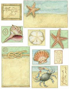 How to Take Good Beach Photos War Photography, Types Of Photography, Wildlife Photography, Decoupage Printables, Ocean Pictures, Nautical Cards, Close Up Portraits, Scene Image, Scrapbooking