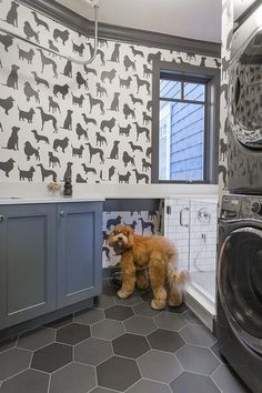 Pet friendly gray laundry room is equipped with a seamless glass dog shower fitted with white subway wall tiles and a polished nickel shower kit.