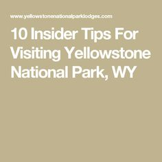 10 Insider Tips For Visiting Yellowstone National Park, WY