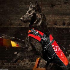 HURTTA Dog Life Jacket Preserver Boat Swim Vest ORANGE 85-175 lb Dog XL #Hurtta