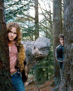 Hermione Granger_Emma Watson, Harry Potter_Daniel Radcliffe,