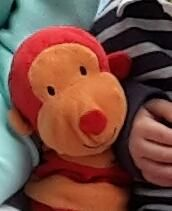 Lost at Phuket Airport on 07 Feb. 2016 by Bev: Please help find Mr Bobo he is an Orange and red stripey monkey from marks and spencer. Cleared security at Phuket Airport, All Is Lost, Lost & Found, Pet Toys, Plane, Monkey, Asia, Teddy Bear, Train