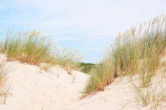 Baie de Somme: récit d'un week-end en amoureux