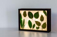 Auf dem Blog zeige ich euch, wie ihr eine tolle DIY Lichtbox / Lightbox im floralen Design ganz einfach selber machen könnt!
