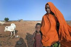 ethiopian shepherd - Google Search