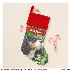 Tri Color Cavalier King Charles Spaniel Dog Christmas Stocking King Charles Spaniel, Cavalier King Charles, Christmas Animals, Christmas Dog, Pet Christmas Stockings, Santa Claus Is Coming To Town, Spaniel Dog, Christmas Card Holders, Pets