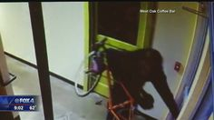 Fox 4 Photographer spots the thief who stole a triathlete's $2,000 bicycle