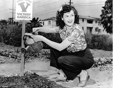 Barbara Hale takes heed to her garden during WWII.  VICTORY GARDENS!