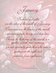 Jan - Each fairy is dressed in associated colors and surrounded by flowers of the birth month, seated on a birthstone crystal ball, holding gemstone wand. Birth Month Quotes, Hello January, January Born, Birthday Month Flowers, Fairy Quotes, Unicorn Fantasy, Mermaid Fairy, Birth Flowers, Beautiful Fairies
