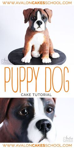 Puppy dog CAKE tutorial... ALL cake too! It maybe a boxer puppy dog cake, but the strcuture and techniques can be used for any sitting dog! Full video tutorial in Avalon Cakes School #dogcake #boxercake #puppycake #cakedecorating