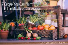 7 Crops You Can Plant in the Middle of the Season