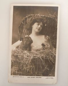 1905 Postcard Miss Gaynor Rowlands w/ French Bulldog & Siamese Cat in Collectibles, Postcards, Animals | eBay