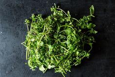 Chickweed and 4 Ways o Use It in the Kitchen - food 52 Healing Herbs, Medicinal Plants, Natural Healing, Edible Wild Plants, Edible Food, Wild Edibles, Edible Flowers, Food 52, Permaculture