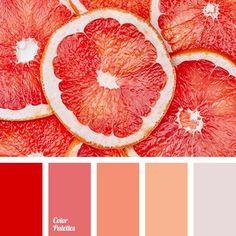 orange color with matching color point design inspiration rh orbitzexhibitions com