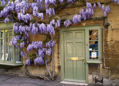 Coordinate Foliage and Paint Colors..the purple wisteria looks great next to the sage green door.