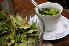 How altitude in Cusco will affect your body after arrival in Peru? Many students that will start learning Spanish at our school, ask us this question. Bay Leaf Tea Benefits, Coca Tea, Cuba, Drink Plenty Of Water, Dieta Detox, Bay Leaves, Peru Travel, Growing Herbs, Tea Recipes
