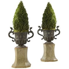 A Pair Of Lead Urns With Scroll Handles On Cushion Moulded Bases at... (¥3,073,170) ❤ liked on Polyvore featuring home, home decor, floral decor, plants, flowers, decor, flower stem and flower urns