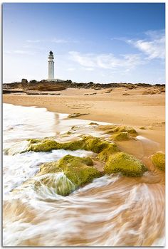 ✯ faro de Cabo Trafalgarheadlandin theProvince of Cádiz Atlantic Ocean 36.183333,-6.033333