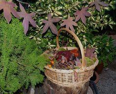Centro decorativo otoñal con elementos naturales y reciclados. Detalle de guirnalda de hojas de arce secas.
