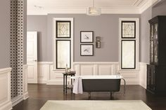 Sherwin-Williams paint (SW7080) Quest Gray