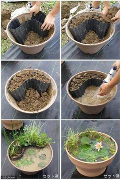 POND in a POT!!! THIS IS AWESOME!!! Definitely trying this!