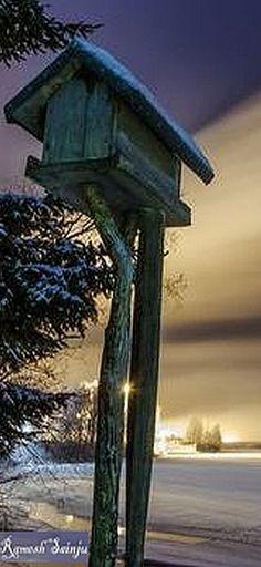WINTER snow birdhouse #by Ramesh Sainju -- 500px.com