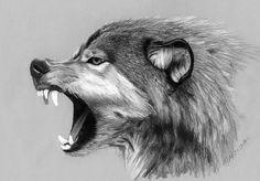 Roaring wolf print by jasmina susak wolf pencil drawings, wolf, wolf tattoo Animal Sketches, Animal Drawings, Pencil Drawings, Wolf Tattoo Design, Tattoo Designs, Tattoo Wolf, Tattoo Ideas, Wolf Side View, Wolf Growling