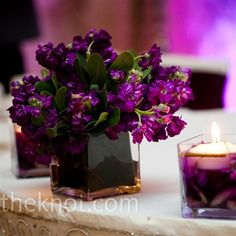Low aubergine hued floral centerpieces for a simple yet sophisticated dinner table. Photo by: Tracy Turpen