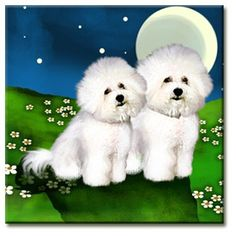 Bichon Frise Dogs Full Moon Ceramic Tile Coaster by by evadesigns, $14.00