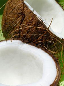 Kid Luau Party Ideas.  Pin the Coconut on the Palm Tree. @Katherine Adams Hines