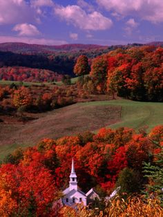 The White Steeple of a Church Among Colourful Autumn Leaves