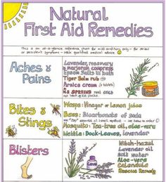 Holistic Health Remedies Natural first aid remedies - nice idea for health class! Holistic Remedies, Natural Health Remedies, Natural Cures, Herbal Remedies, Natural Healing, Holistic Healing, Natural Life, Holistic Care, Natural Things