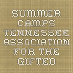 Summer Camps - Tennessee Association for the Gifted