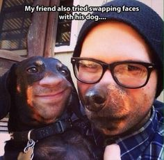 Funny pictures about It's weird how normal it looks. Oh, and cool pics about It's weird how normal it looks. Also, It's weird how normal it looks. You Funny, Funny Dogs, Hilarious, Funny Stuff, Random Stuff, Funny Animals, Funny Face Swap, Face Swaps, Dump A Day