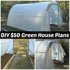 How To Build A 50 Dollar Greenhouse DIY Plans