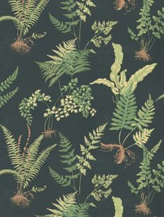 Thibaut's Ferns is taken from the Classic Thibaut wallpaper collection and is in stock and available for purchase.