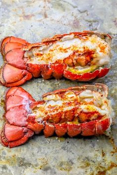 The Best Easy Broiled Lobster Tails Recipe - Oven Baked Lobster Tails - The Best Easy Broiled Lobster Tails Recipe - the easiest, most delicious way to make broiled lobster tails with your oven in just 10 minutes! Lobster Tail Oven, Baked Lobster Tails, Broiled Lobster Tails Recipe, Chicken Wing Recipes, Pork Chop Recipes, Fish Recipes, Seafood Recipes, Cooking Recipes, Appetizer Recipes