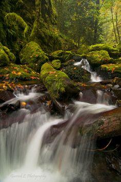 Gorton Creek in the Columbia River Gorge in Oregon
