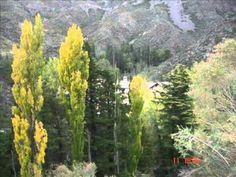 Otoño en Mendoza Mendoza, Vineyard, Mountains, Nature, Plants, Travel, Outdoor, Outdoors, Naturaleza