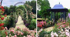 Neďaleko Trnavy vzniklo unikátne rozárium s 90 odrodami ruží. Toto čarovné miesto môžete voľne navštíviť Trips, Sidewalk, Viajes, Side Walkway, Traveling, Walkway, Travel, Walkways, Pavement