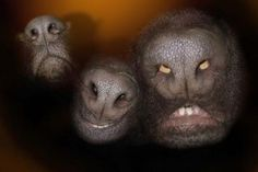 Dog noses look like angry aliens.