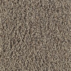 SmartStrand Desert Neutral Frieze Carpet--had frieze before and loved it!
