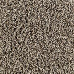 1000 Images About Frieze Carpet On Pinterest Frieze
