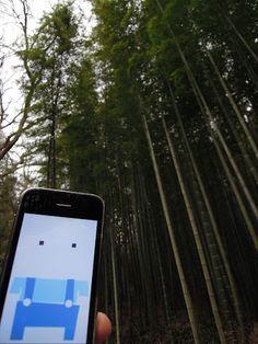 The sweetest Bamboo grove in the world.  Juknokwon / Damyang, Korea