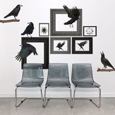 Our Realistic Ravens wall decals are a perfect way to spook up your Halloween decor this year! #DIY #decor