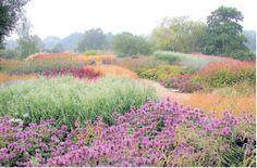 Een park in het Engelse Penthorpe. foto Piet Oudolf